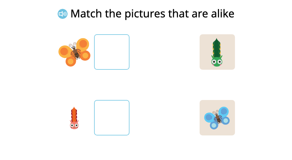 Match pairs of similar items that differ in size and color